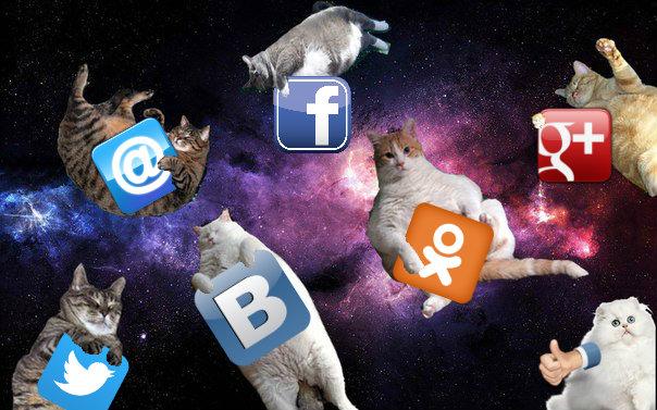 socialnie-signaly